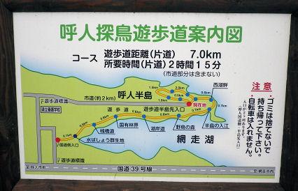 0903_呼人探鳥遊歩道.jpg