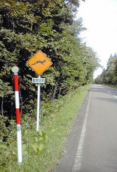 44_動物横断注意の標識.jpg