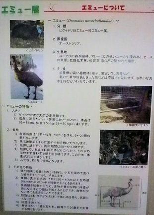 0607_笑友概要.jpg