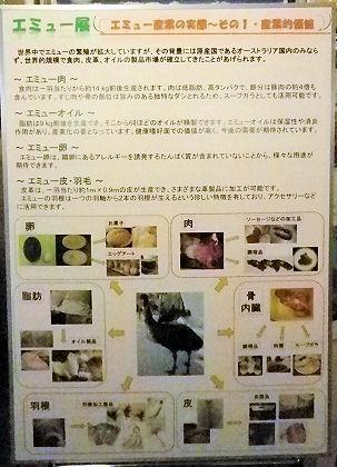 0607_笑友その1.jpg