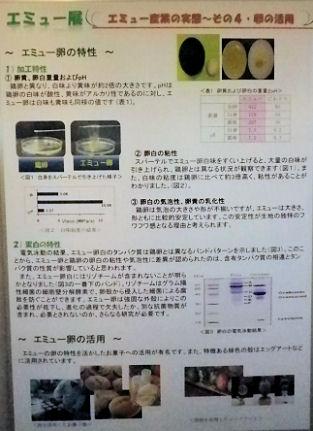 0607_笑友の産業化その4.jpg