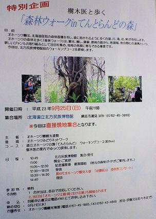 0907_樹木医と歩く森林ウォーク.jpg