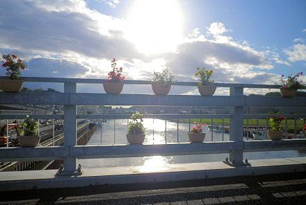 0907_網走橋の花壇.jpg