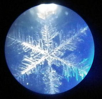 1017_雪の結晶.jpg