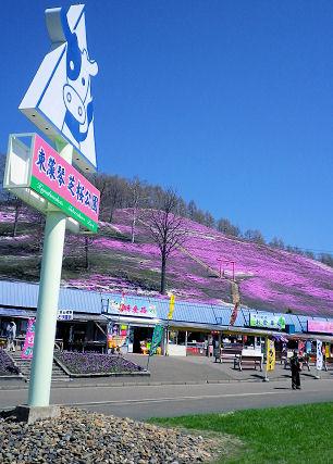東藻琴芝桜公園.jpg
