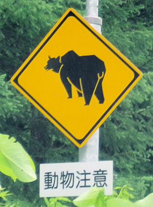 0710_熊!注意.jpg