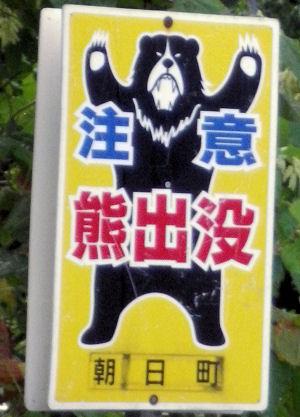 0820_熊出没!.jpg