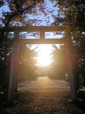 1010_鳥居と夕陽.jpg