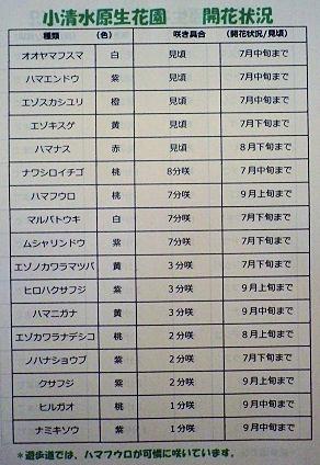 0712_小清水原生花園.jpg
