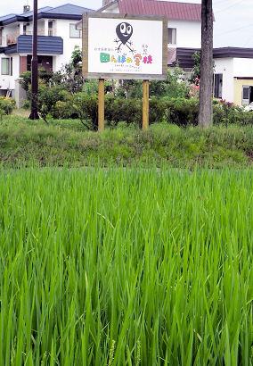 0731_田んぼの学校.jpg