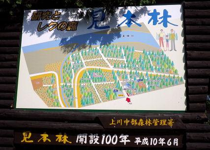 0801_見本林マップ.jpg