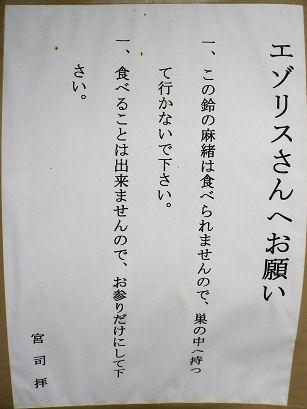上士幌_蝦夷栗鼠さんへ.jpg