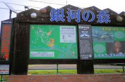 0917_銀河の森.jpg
