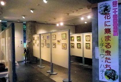 0823_花に集まる虫展.jpg