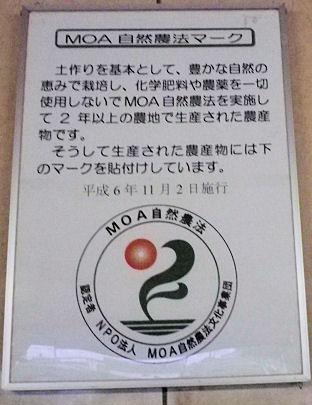 0823_MOA認定証.jpg