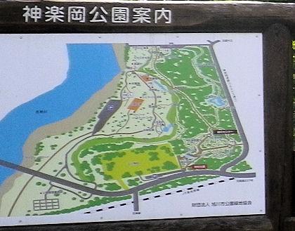 0801_神楽岡公園案内図.jpg