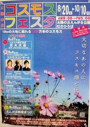 0826_遠軽コスモスフェスタ.jpg