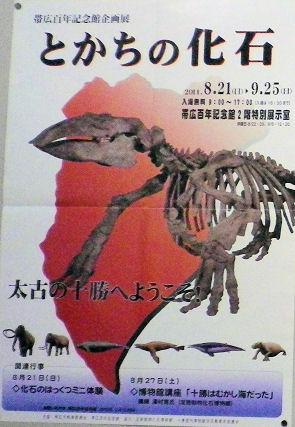 0726_とかちの化石.jpg