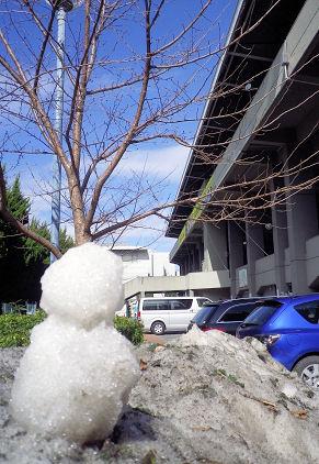 0220_秩父宮×雪達磨.jpg