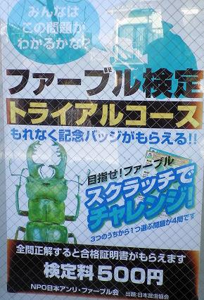 0217_ファーブル検定.jpg