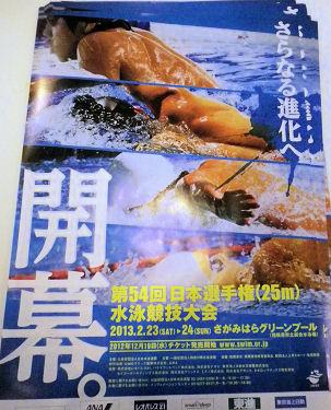 0220_日本水泳競技大会.jpg