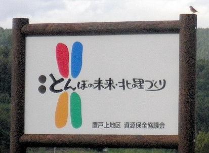 0920_とんぼの未来.jpg