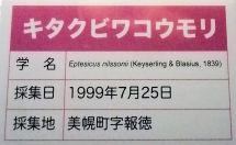 0327_キビクビワ蝙蝠.jpg