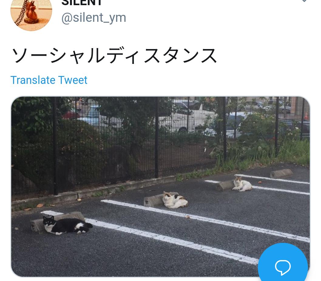 f:id:hotakatachibana:20200508121430p:plain