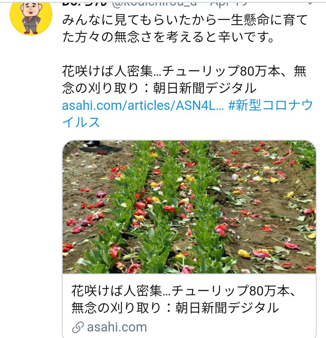 f:id:hotakatachibana:20200508121645p:plain