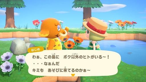 【あつまれどうぶつの森】ゾウのはじめ