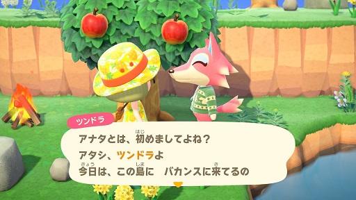 【あつまれどうぶつの森】オオカミのツンドラ