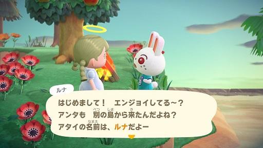 【あつ森】ウサギのルナ