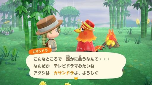 【あつ森】ニワトリのカサンドラ