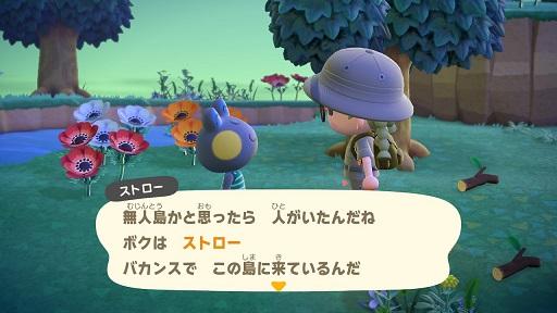 【あつ森】カエルのストロー