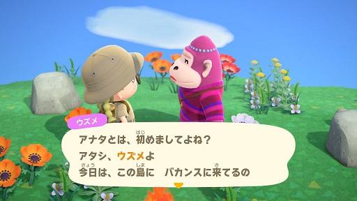 【あつ森】ゴリラのウズメさん