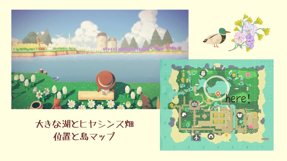 【あつ森】大きな湖とヒヤシンスの花畑・島マップ