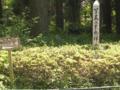 写真工業発祥の地 小西本店(現・コニカミノルタ)創業地 [コニカ