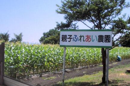 P13ふれあい農園.JPG