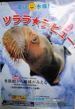 0724_小樽水族館.jpg