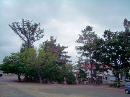CIMG4919.JPG