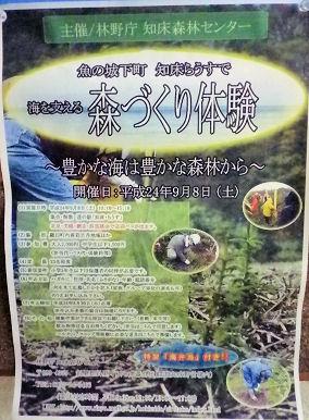 0828_らうす森づくり体験.jpg