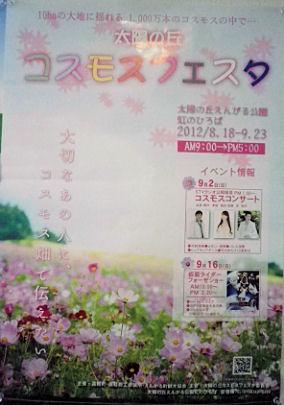 0820_遠軽コスモスフェスタ.jpg