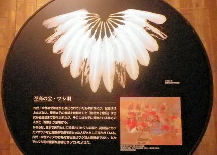 0801_鷲の羽根.jpg