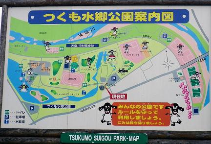 0820_つくも水郷公園.jpg