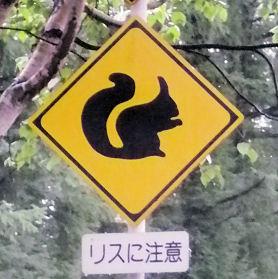 帯広_リスに注意!.jpg