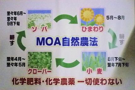 0823_MOA自然農法.jpg