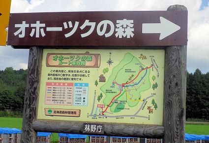 0923_オホーツクの森.jpg