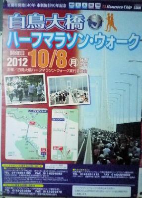 0716_白鳥大橋マラソン.jpg