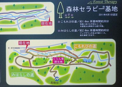 0531_森林セラピー図.jpg