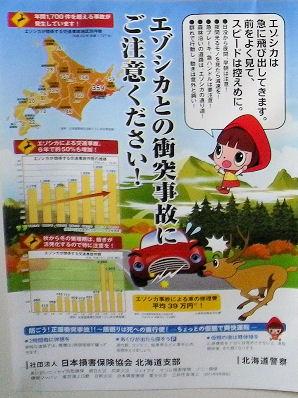 0919_エゾシカ注意!.jpg